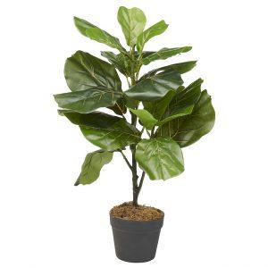 Kunstplant Ficus Lyrata H75cm - HTT Decorations