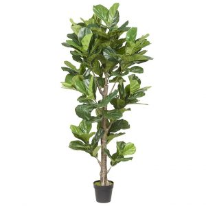 Kunstplant Ficus Lyrata H190cm - HTT Decorations