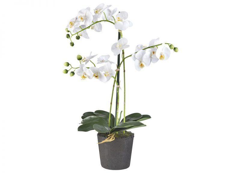 Kunstplant Orchidee / Phalaenopsis 3-tak wit H63cm - HTT Decorations