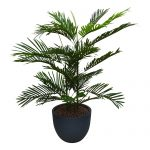 Kunstplant Areca palm met sierpot Eggy35 antraciet - kunstplantshop.nl