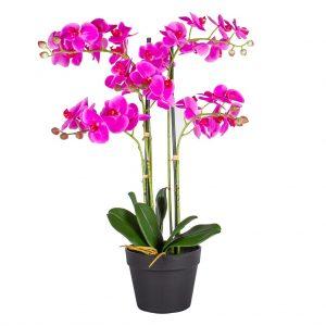 Kunstplant Orchidee / Phalaenopsis XL 5-tak roze H68cm - HTT Decorations