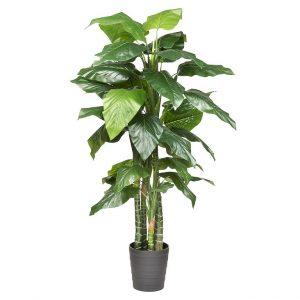 Kunstplant Philodendron H180cm - HTT Decorations
