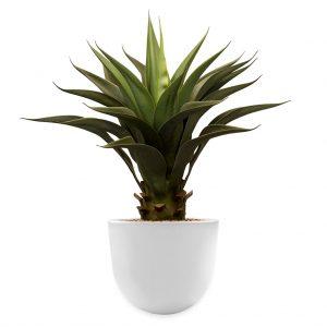Kunstplant Agave vetplant in Eggy wit H70 cm - HTT Decorations