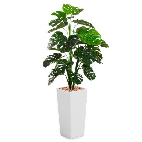 HTT - Kunstplant Monstera in Clou vierkant wit H185 cm - kunstplantshop.nl