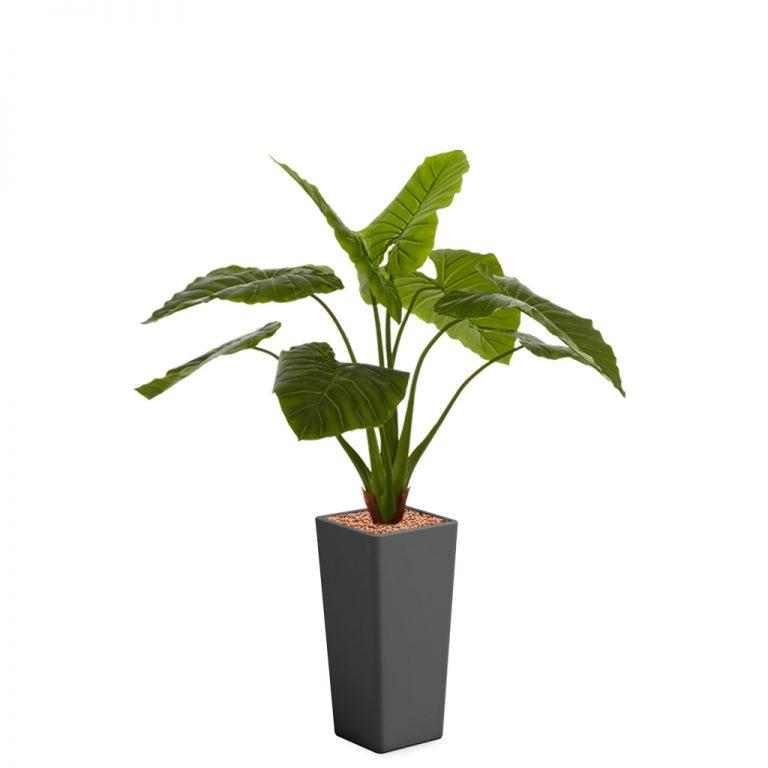 HTT - Kunstplant Philodendron in Clou vierkant antraciet H165 cm - kunstplantshop.nl