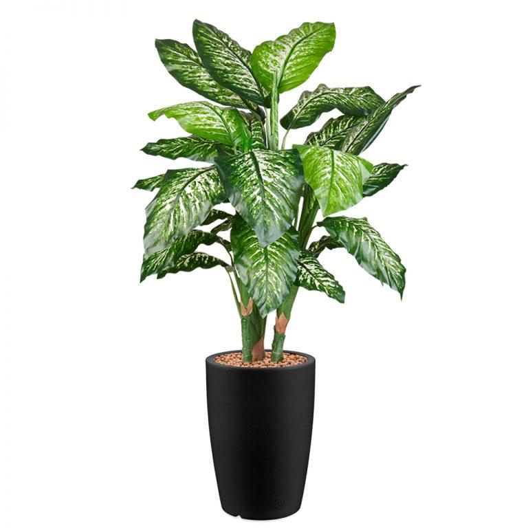 HTT - Kunstplant Dieffenbachia in Genesis rond antraciet H150 cm - kunstplantshop.nl