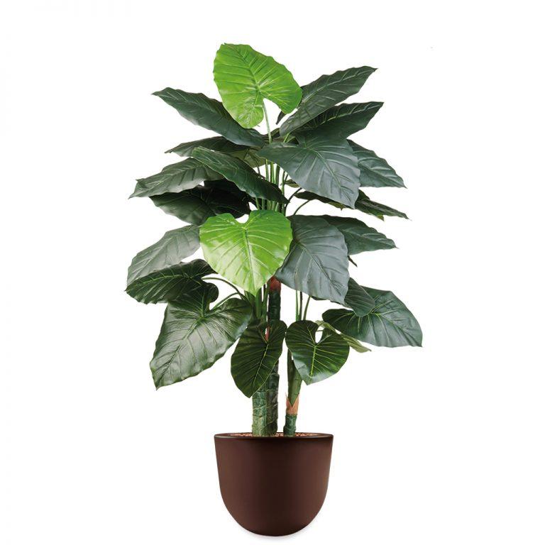 HTT - Kunstplant Philodendron in Eggy bruin H135 cm - kunstplantshop.nl