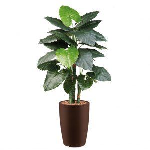 HTT - Kunstplant Philodendron in Genesis rond bruin H150 cm - kunstplantshop.nl