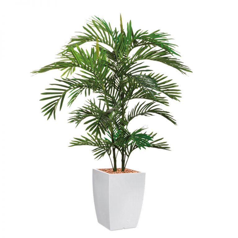 HTT - Kunstplant Areca palm in Genesis vierkant wit H150 cm - kunstplantshop.nl