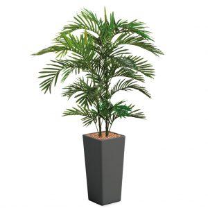 HTT - Kunstplant Areca palm in Clou vierkant antraciet H185 cm - kunstplantshop.nl