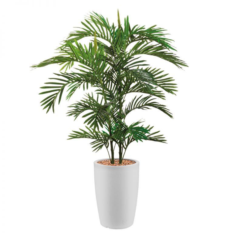 HTT - Kunstplant Areca palm in Genesis rond wit H150 cm - kunstplantshop.nl