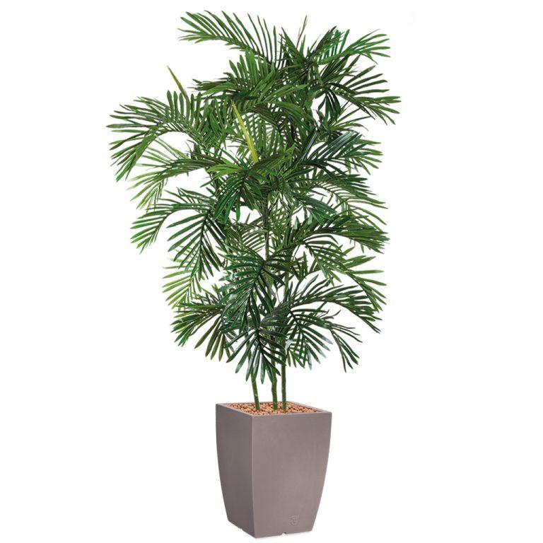 HTT - Kunstplant Areca palm in Genesis vierkant taupe H210 cm - kunstplantshop.nl