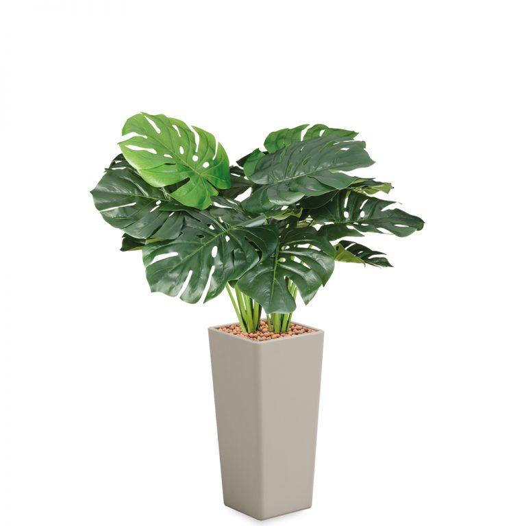 HTT - Kunstplant Monstera in Clou vierkant taupe H105 cm - kunstplantshop.nl