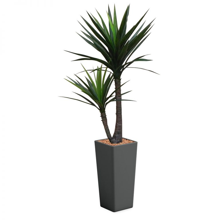 HTT - Kunstplant Yucca in Clou vierkant antraciet H185 cm - kunstplantshop.nl