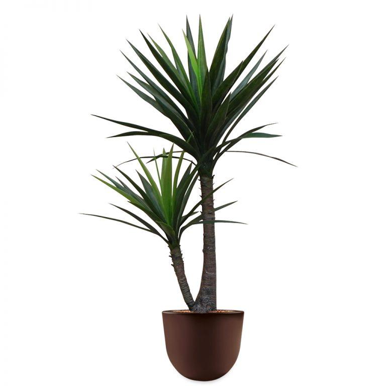 HTT - Kunstplant Yucca in Eggy bruin H130 cm - kunstplantshop.nl