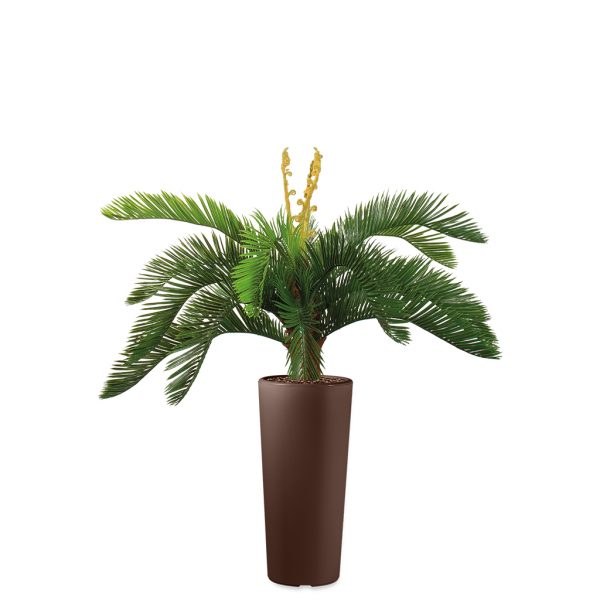 Kunstplant Cycas in Clou rond bruin H105 cm - HTT Decorations