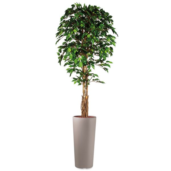 Kunstplant Ficus in Clou rond taupe H250 cm - HTT Decorations