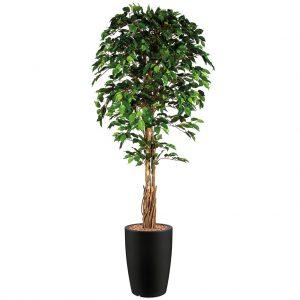 HTT - Kunstplant Ficus in Genesis rond antraciet H210 cm - kunstplantshop.nl