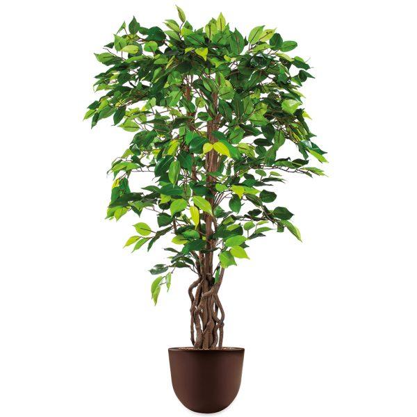 HTT - Kunstplant Ficus in Eggy bruin H140 cm - kunstplantshop.nl