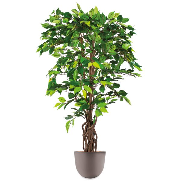 HTT - Kunstplant Ficus in Eggy taupe H140 cm - kunstplantshop.nl