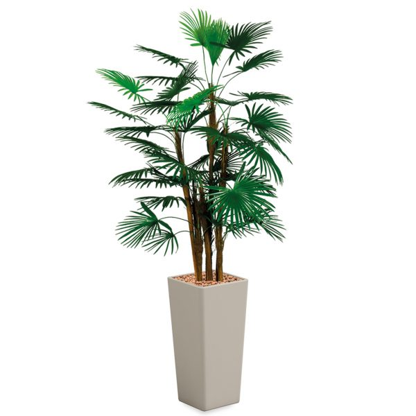 HTT - Kunstplant Rhapis palm in Clou vierkant taupe H185 cm - kunstplantshop.nl