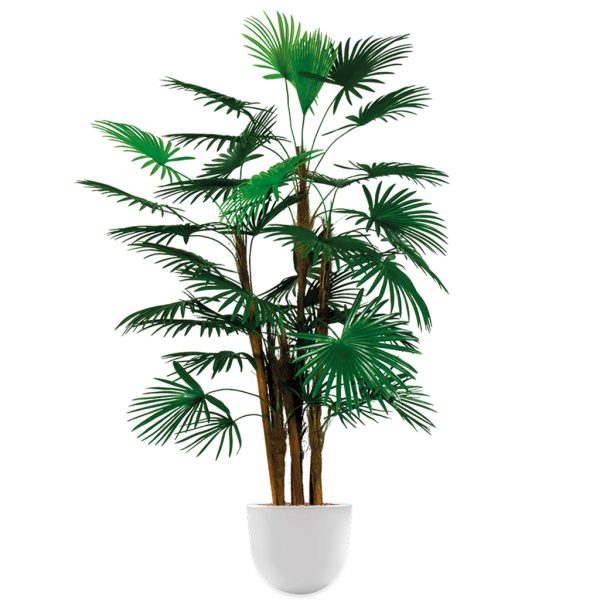 HTT - Kunstplant Rhapis palm in Eggy wit H135 cm - kunstplantshop.nl