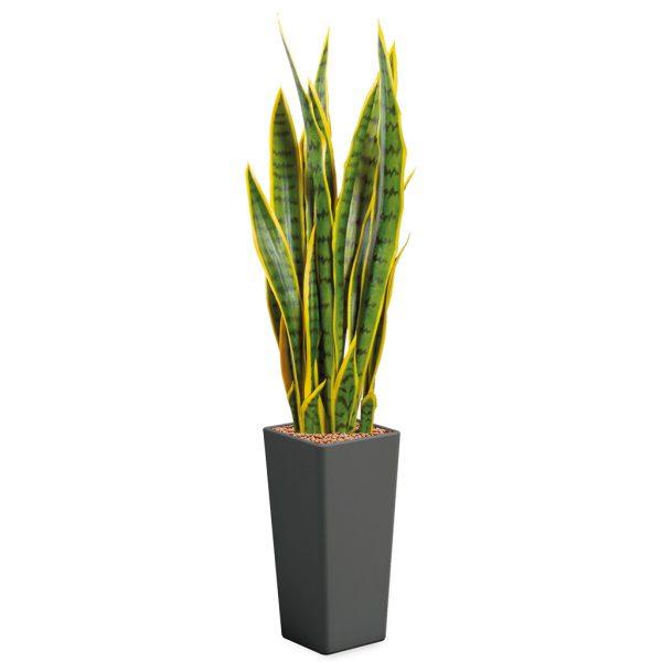 Kunstplant Sansevieria in Clou vierkant antraciet H120 cm - HTT