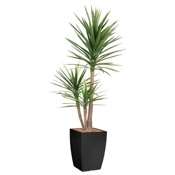 HTT - Kunstplant Yucca in Genesis vierkant antraciet H200 cm - kunstplantshop.nl